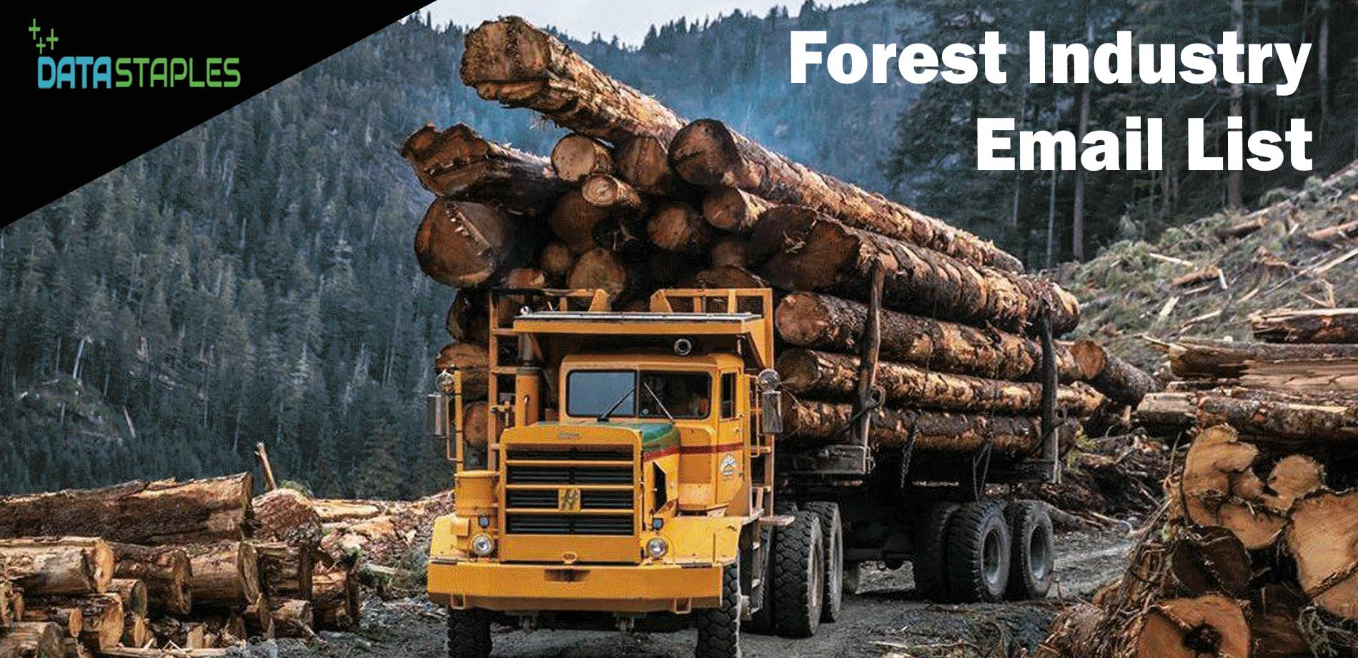 Forest Industry Email List   DataStaples