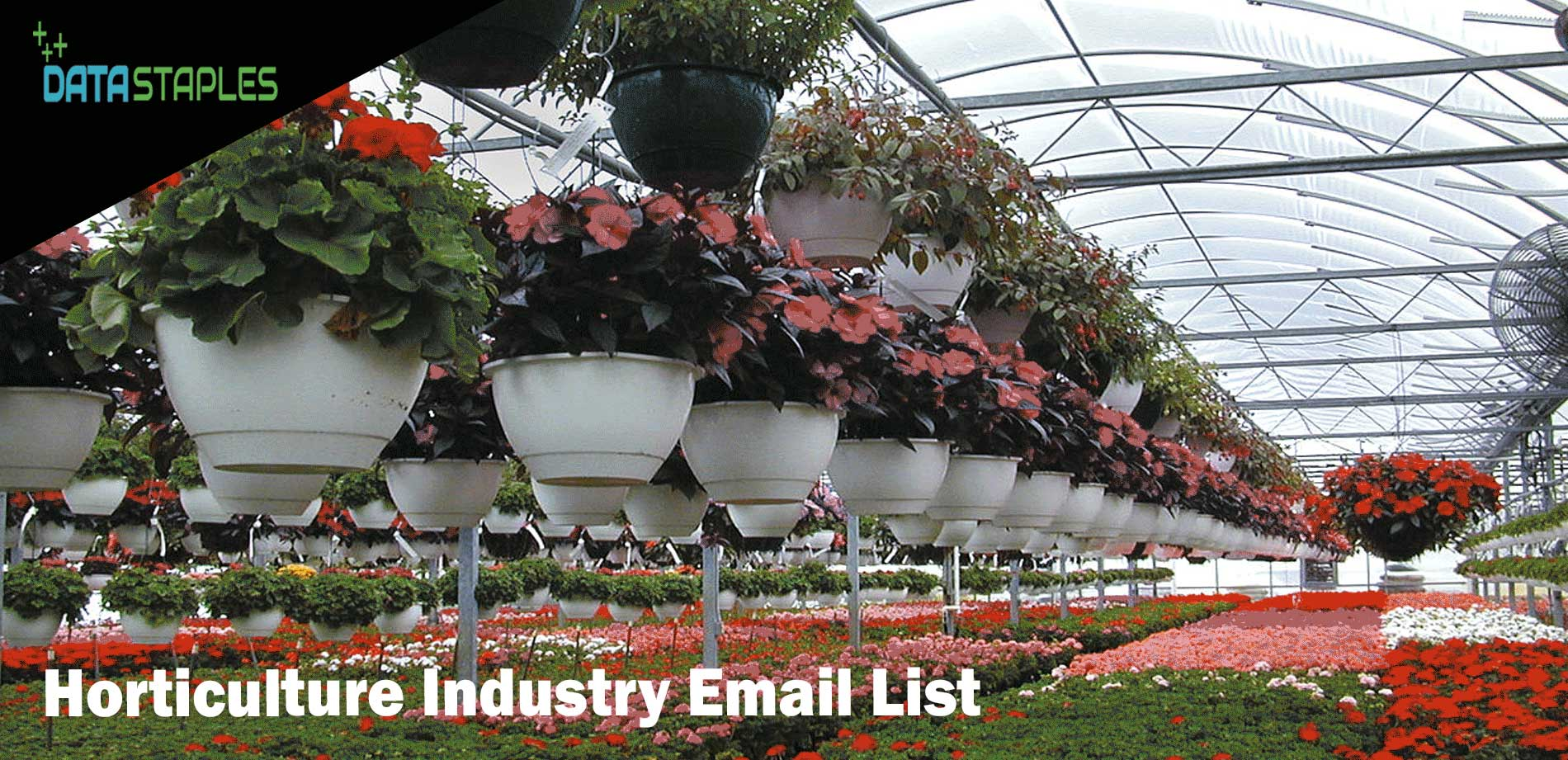 Horticulture Industry Email List   DataStaples