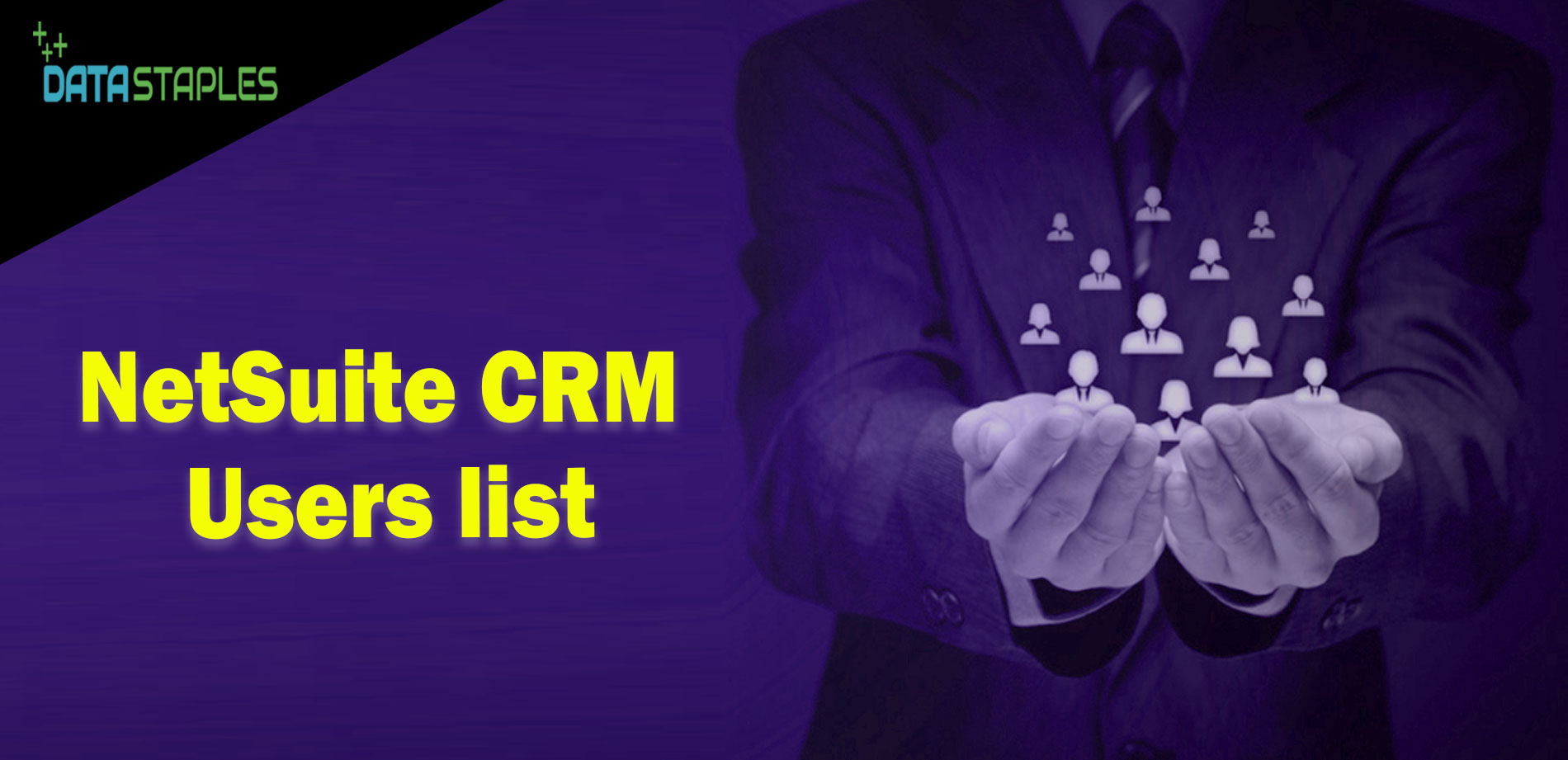 NetSuite CRM Users Mailing List | DataStaples