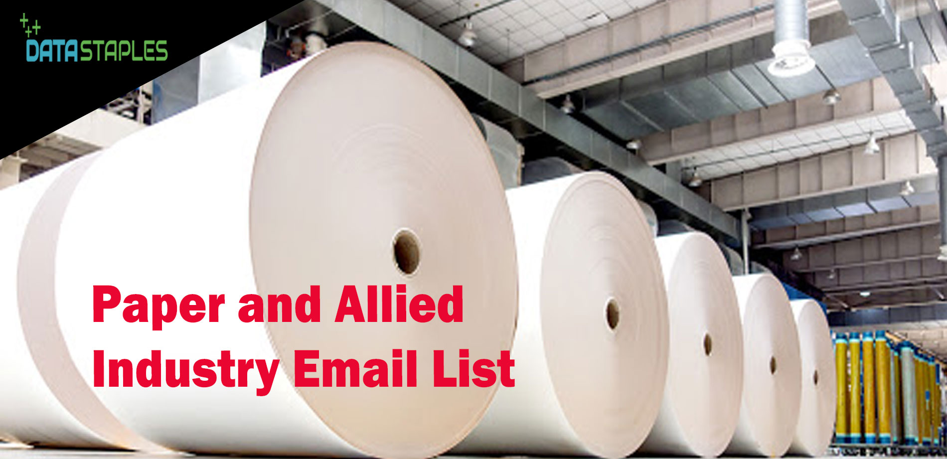 Paper and Allied Industry Email List | DataStaples
