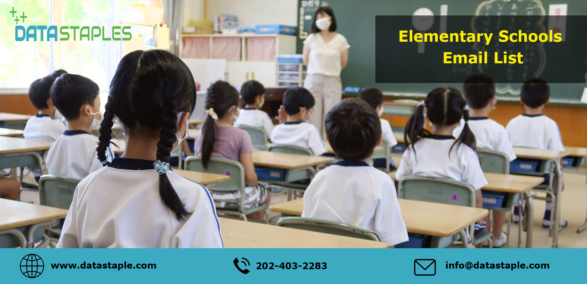 Elementary Schools Email List | DataStaples