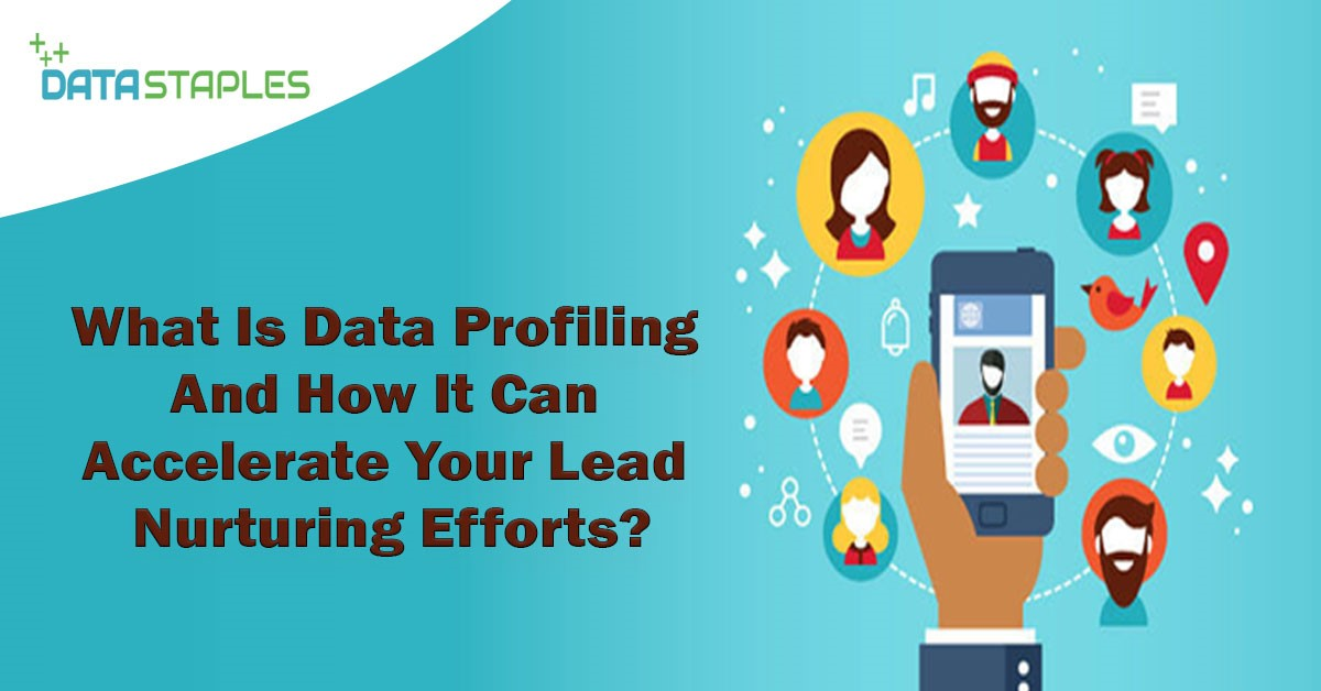 What Is Data Profiling And How It Can Accelerate Your Lead Nurturing Efforts | DataStaples