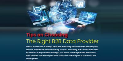 Tips On Choosing The Right B2B Data Provider | DataStaples