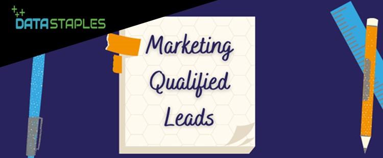 Marketing Qualified Leads | DataStaples