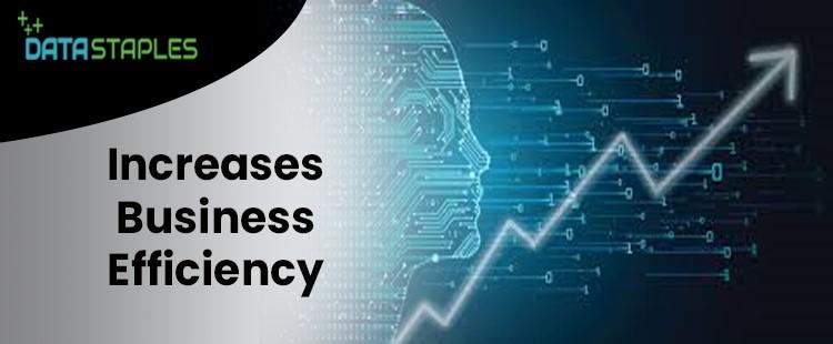 Increase Business Efficiency | DataStaples|