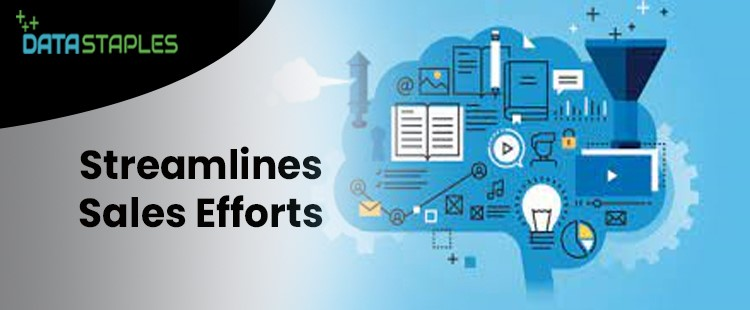 Streamline Sales Efforts | DataStaples